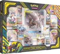 Pokémon Tag Team Powers Kollektion